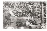 Jess Willard Knocks Out Jack Johnson 1915 original photo - 1950s print