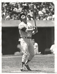 1978 Thurman Munson New York Yankees Russ Reed TYPE I original Photo