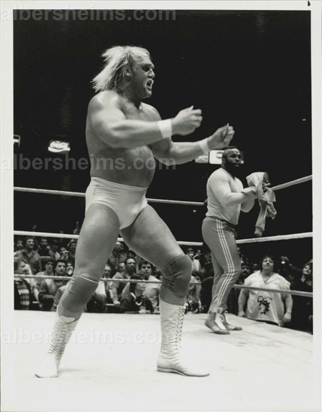 Hulk Hogan & Mr. T 1985 Pro Wrestling WWF Match TYPE 1 Photo